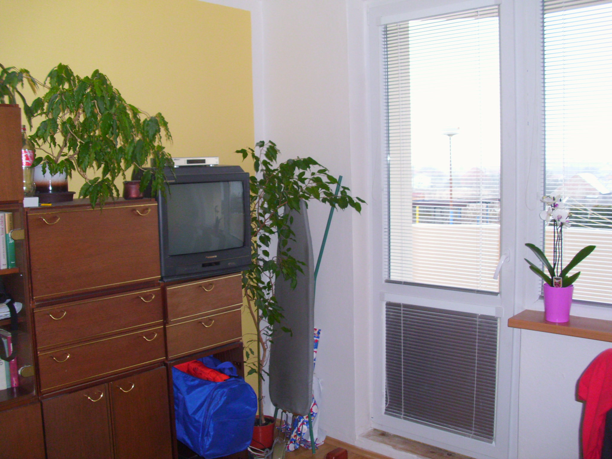 Stěhování bytu 2+1 v Brně